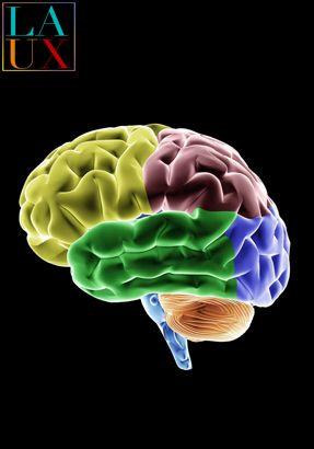 mental mind